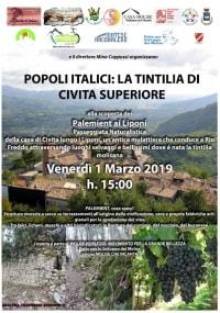 Popoli Italici la Tintilia di Civita Superiore di Bojano e la paleo-industria dei palemient