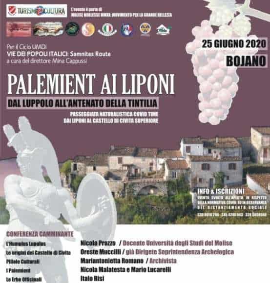 Vie Popoli Italici, luppolo e Tintilia. Conferenza Camminante ai Palemient con Molise Noblesse ai Liponi. Outdoor a Bojano