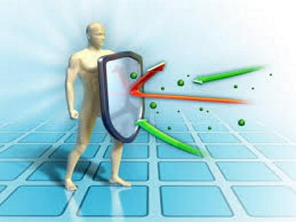 Dieta vegana aumenta difese immunitarie. Lo spiegano i medici