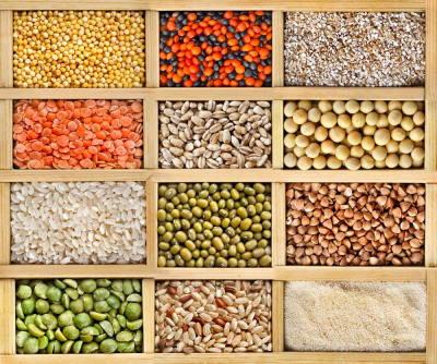 Si alle proteine vegetali per una corretta alimentazione
