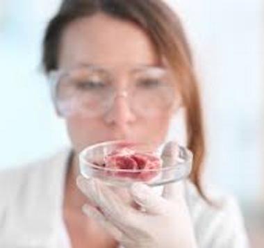 Carne coltivata in laboratorio da oggi nei supermercati. Ecco com'è
