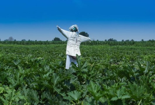 agricola-per-uscire