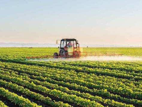 agricoltura-salva-in-molise