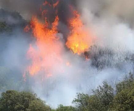 Allarme incendi in Sardegna. Brucia la provincia di Oristano