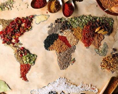 Alimentare la terra. Coltivare il futuro: la sfida mondiale del diritto all'alimentazione