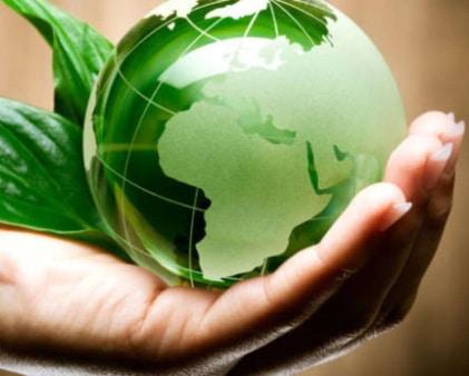 Alimentazione sana e sostenibile: accordo Seeds&Chips e EAT Foundation