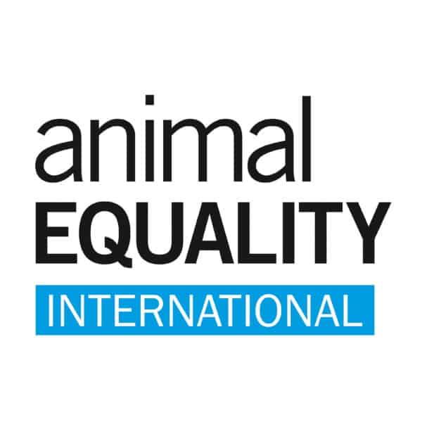 Animal Equality su Canale5 con Joaquin Phoenix