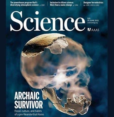 Homo Neanderthal scoperta storica in Israele. Da dove veniamo?