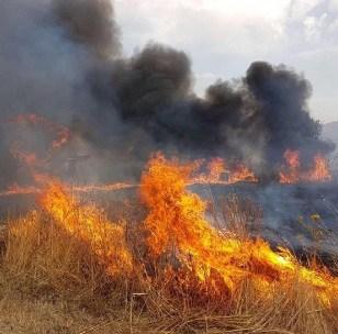 Stato pericolosità incendi Molise. Si comincia