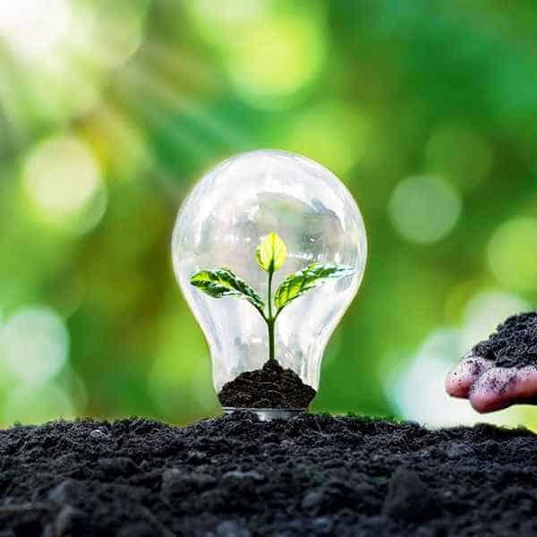 Transizione ecologica al G20: scelte ecosostenibili carbonfree