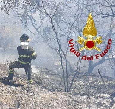 Incendi Basso Molise, Toma chiede dichiarazione stato d'emergenza