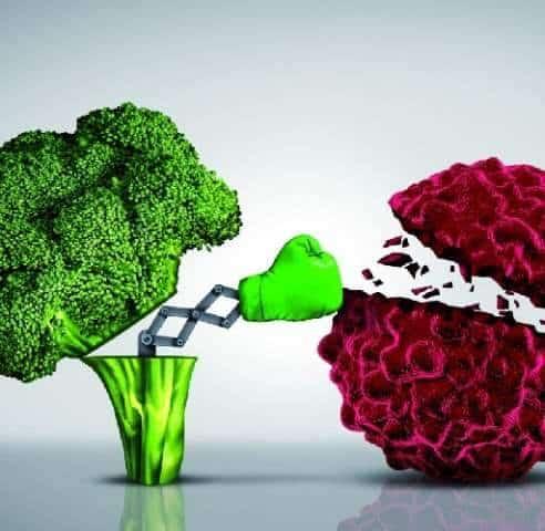 Come prevenire i tumori: ecco gli alimenti più indicati